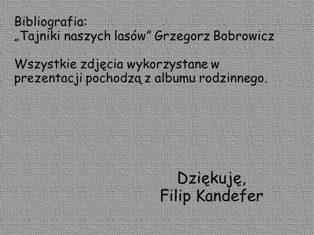 Dziękuję, Filip Kandefer Bibliografia: