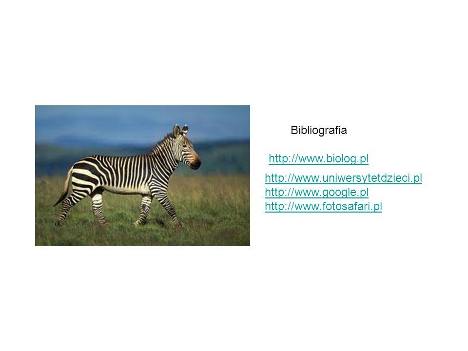 Bibliografia http://www.biolog.pl. http://www.uniwersytetdzieci.pl.