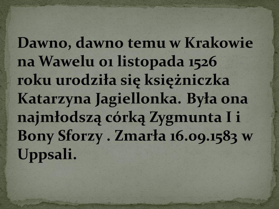 Dawno, dawno temu w Krakowie na Wawelu 01 listopada 1526 roku urodziła się księżniczka Katarzyna Jagiellonka.