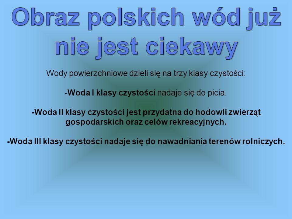 Obraz polskich wód już nie jest ciekawy