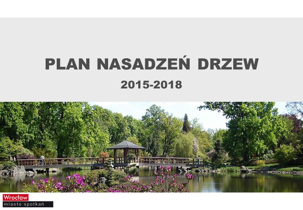 PLAN NASADZEŃ DRZEW 2015-2018