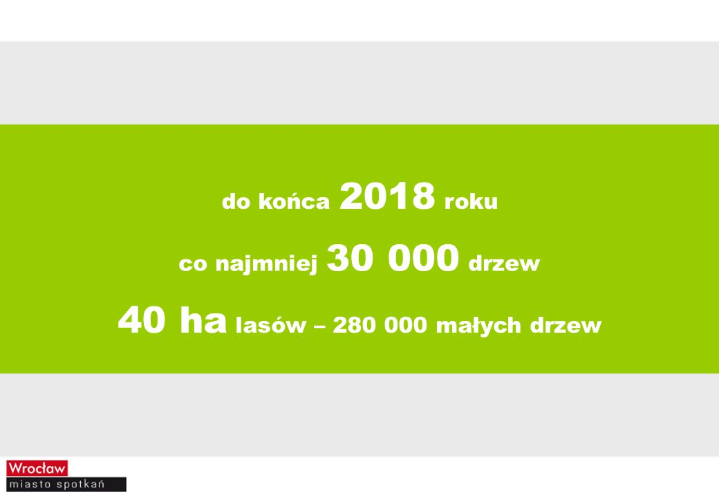 40 ha lasów – 280 000 małych drzew do końca 2018 roku
