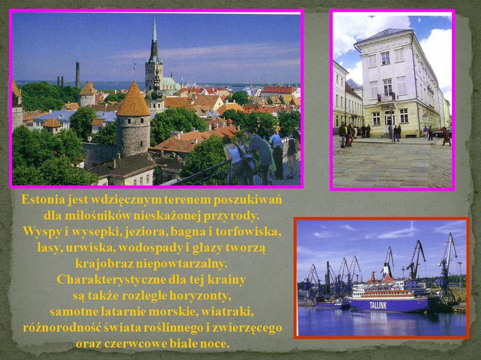 Estonia jest wdzięcznym terenem poszukiwań