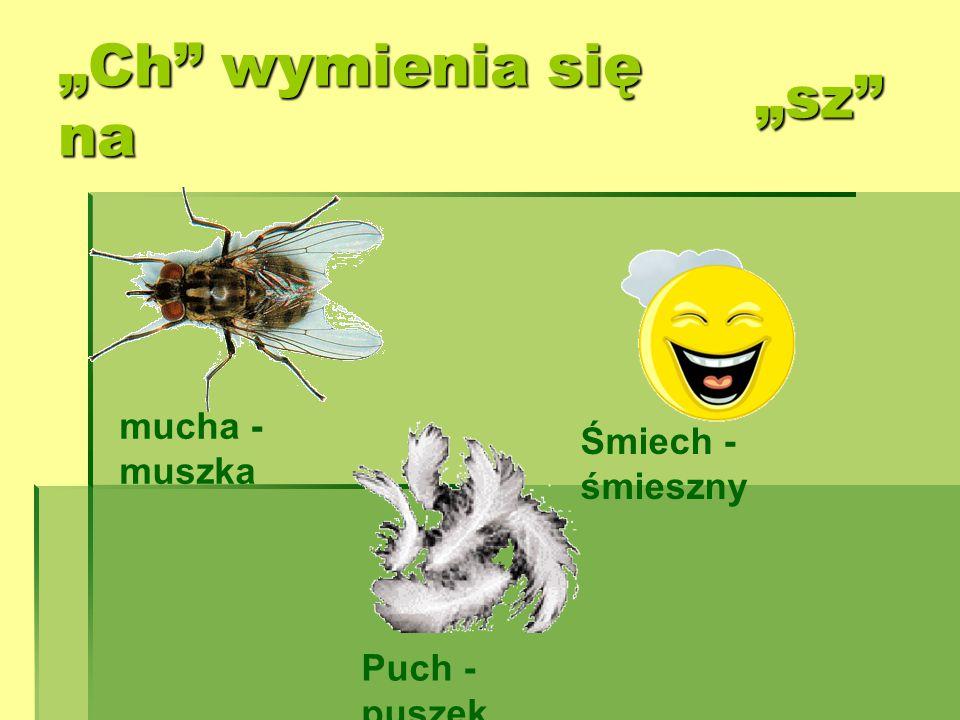 """""""Ch wymienia się na """"sz mucha - muszka Śmiech - śmieszny"""