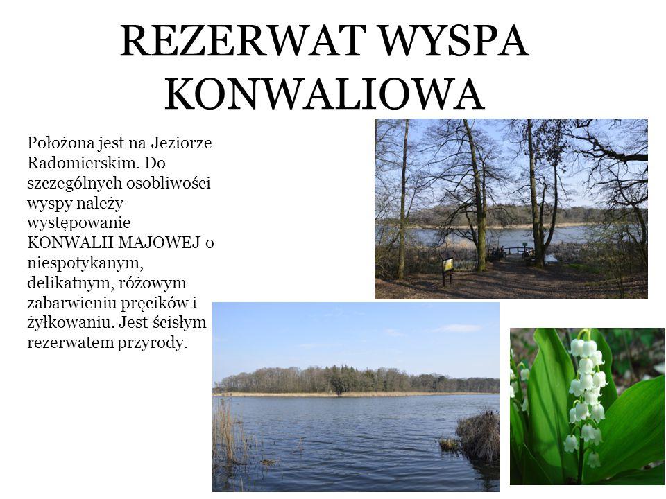 REZERWAT WYSPA KONWALIOWA