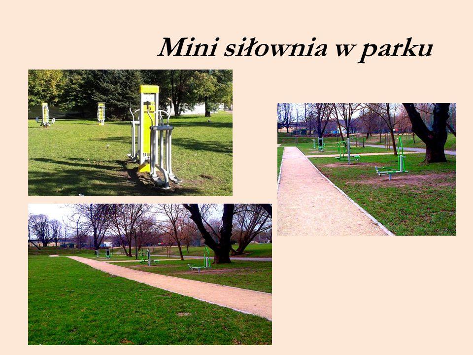 Mini siłownia w parku