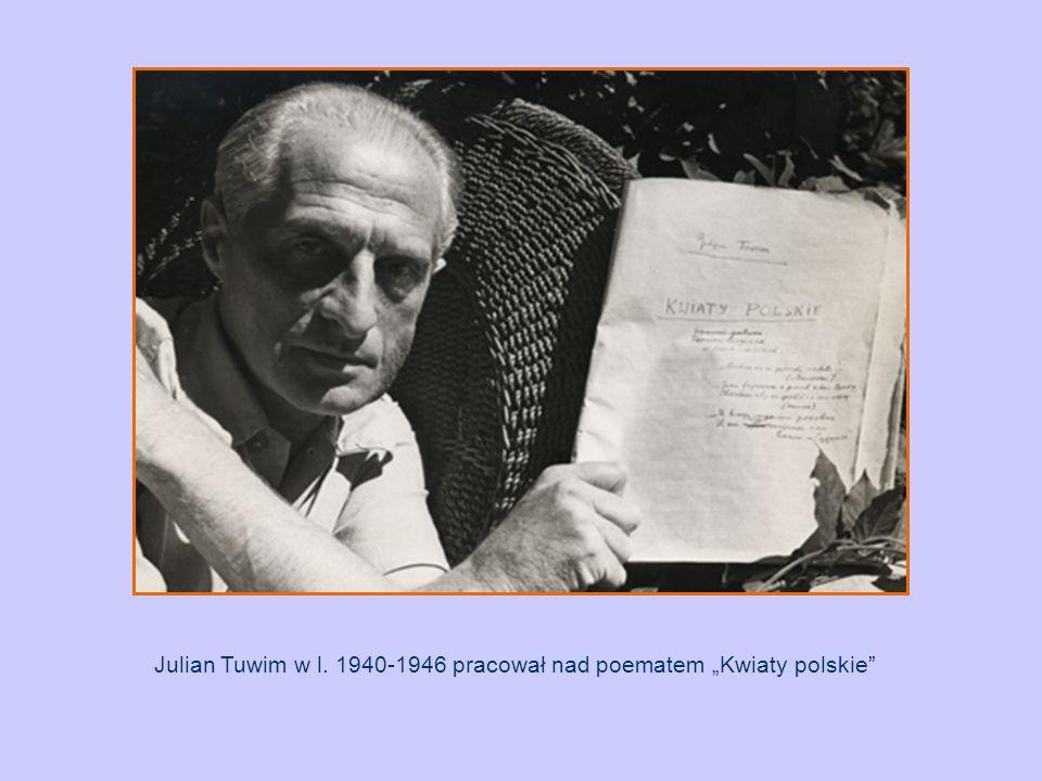 """Julian Tuwim w l. 1940-1946 pracował nad poematem """"Kwiaty polskie"""