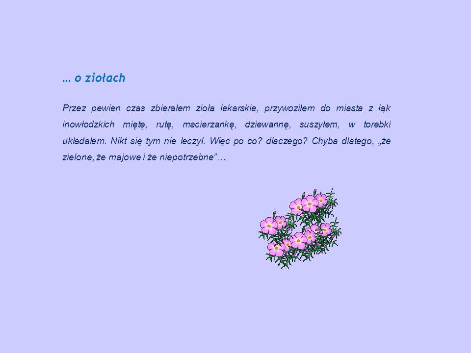 … o ziołach