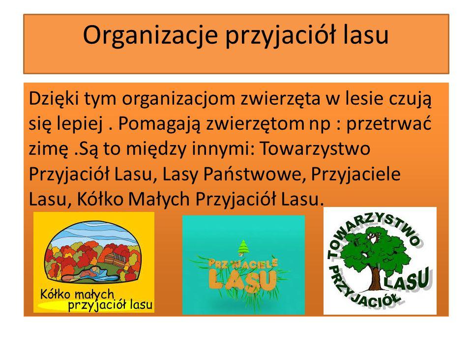 Organizacje przyjaciół lasu