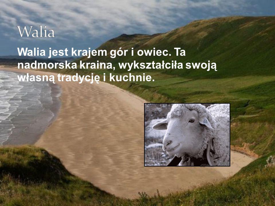 Walia Walia jest krajem gór i owiec.