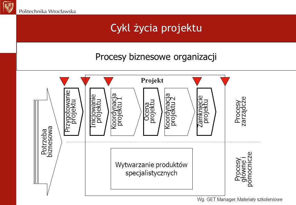 Cykl życia projektu Procesy biznesowe organizacji Projekt