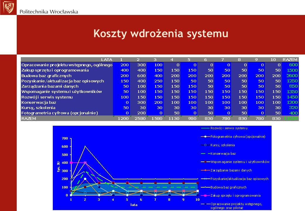 Koszty wdrożenia systemu