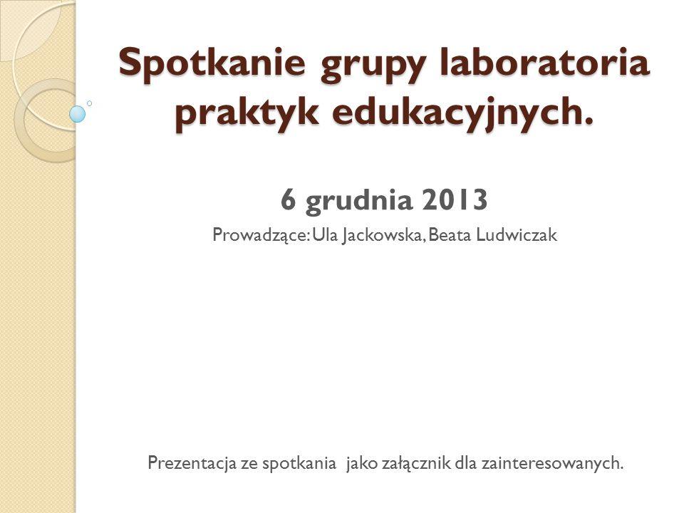 Spotkanie grupy laboratoria praktyk edukacyjnych.
