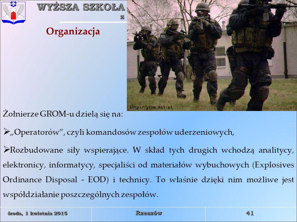 Organizacja Żołnierze GROM-u dzielą się na: