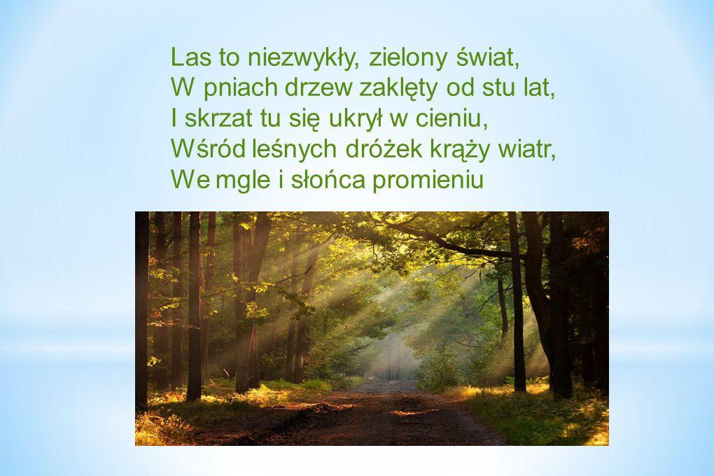 Las to niezwykły, zielony świat, W pniach drzew zaklęty od stu lat, I skrzat tu się ukrył w cieniu, Wśród leśnych dróżek krąży wiatr, We mgle i słońca promieniu