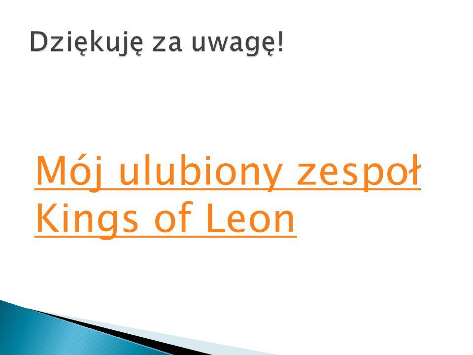 Mój ulubiony zespoł Kings of Leon