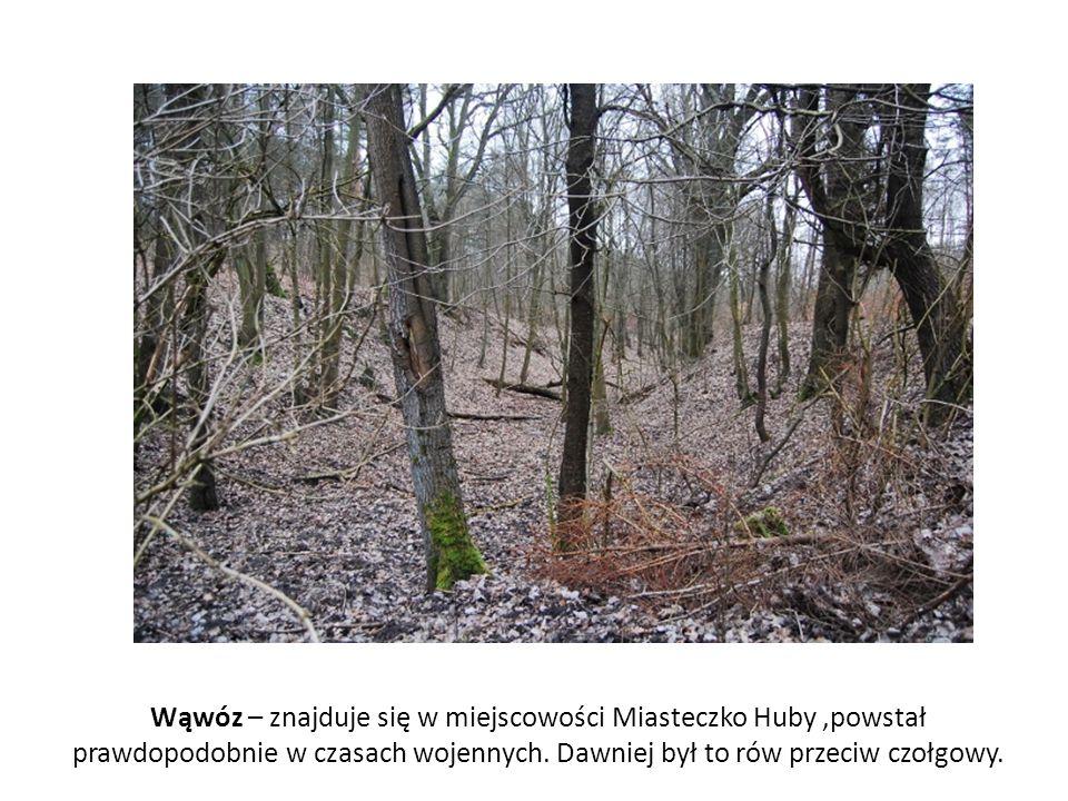 Wąwóz – znajduje się w miejscowości Miasteczko Huby ,powstał prawdopodobnie w czasach wojennych.