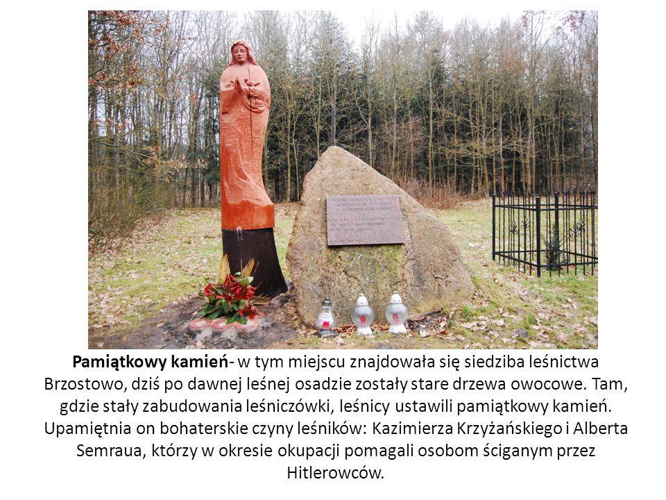 Pamiątkowy kamień- w tym miejscu znajdowała się siedziba leśnictwa Brzostowo, dziś po dawnej leśnej osadzie zostały stare drzewa owocowe.