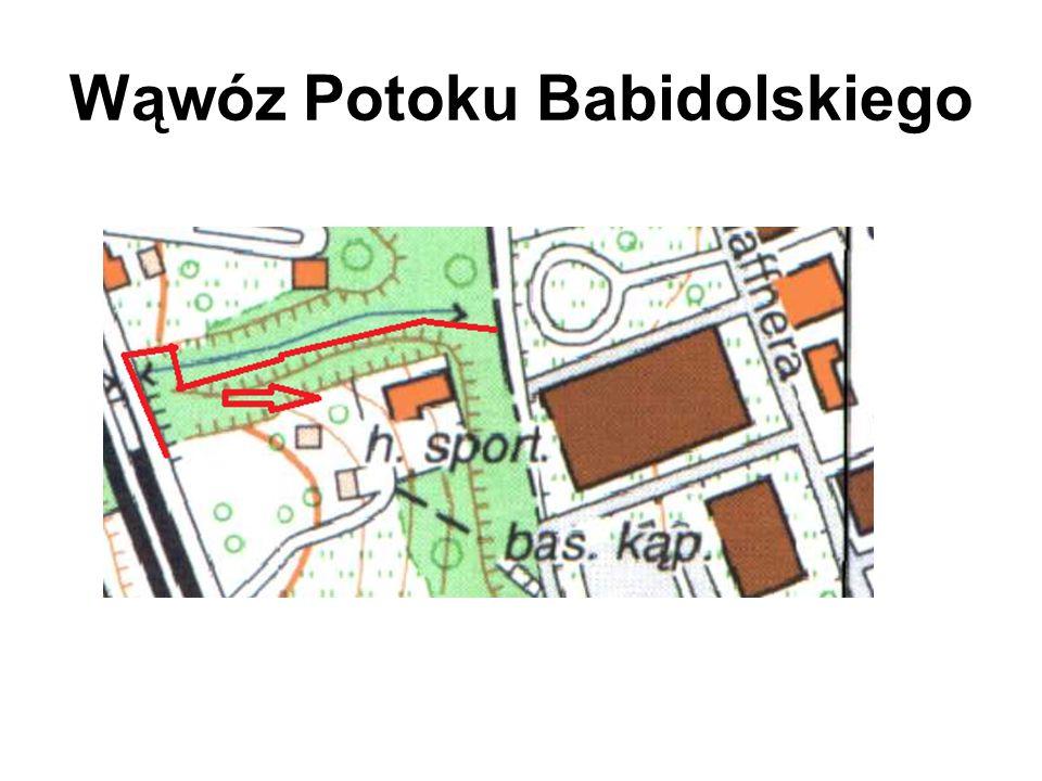 Wąwóz Potoku Babidolskiego