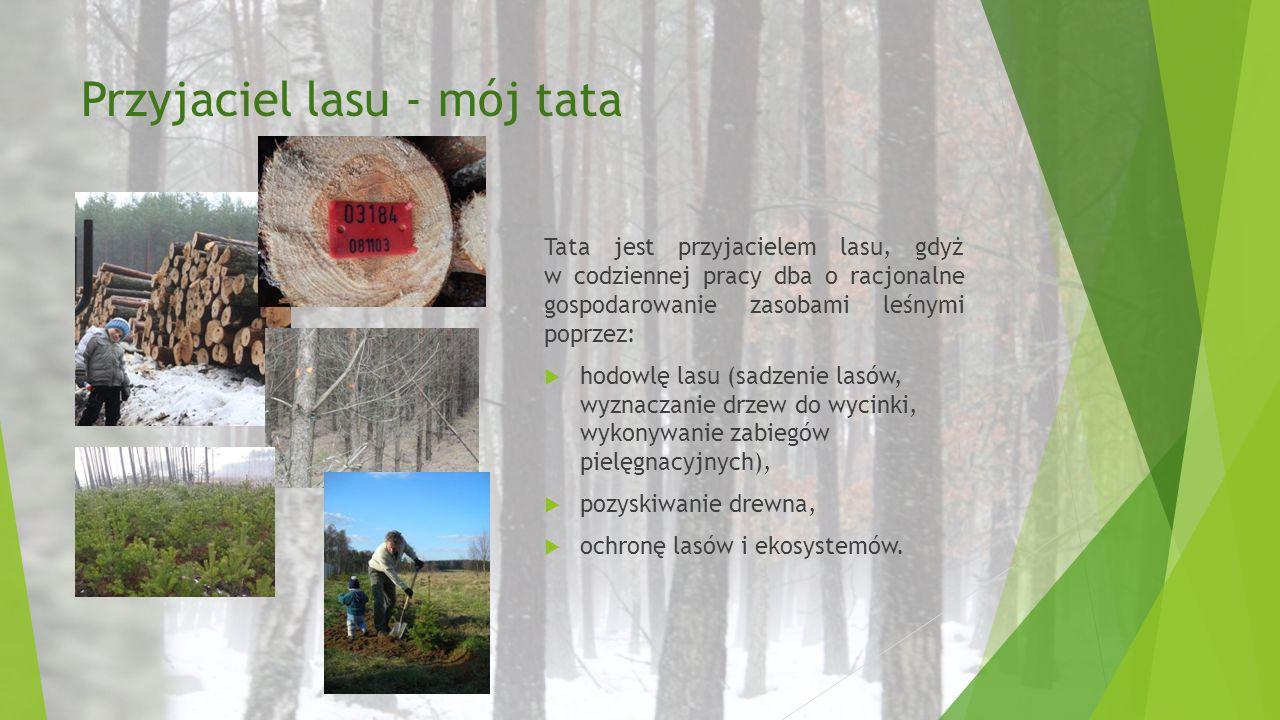 Przyjaciel lasu - mój tata