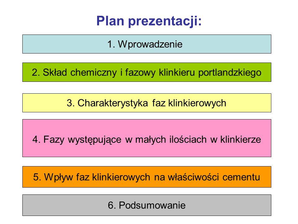 Plan prezentacji: 1. Wprowadzenie