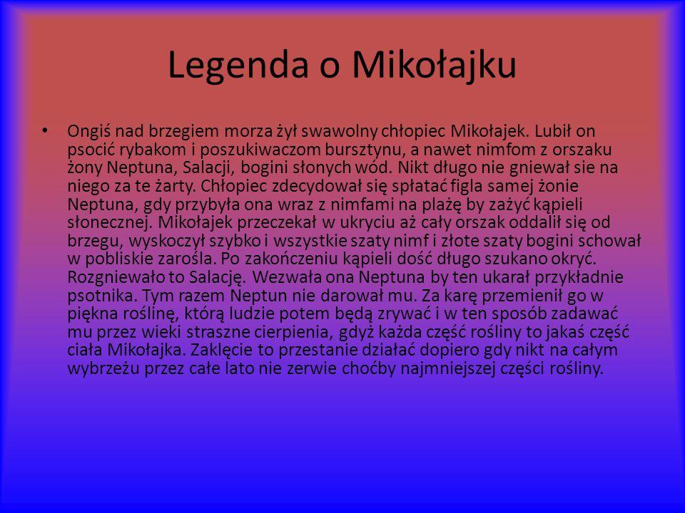 Legenda o Mikołajku