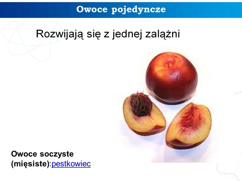 Owoce pojedyncze Owoce soczyste (mięsiste):pestkowiec
