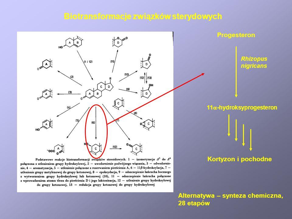 Biotransformacje związków sterydowych