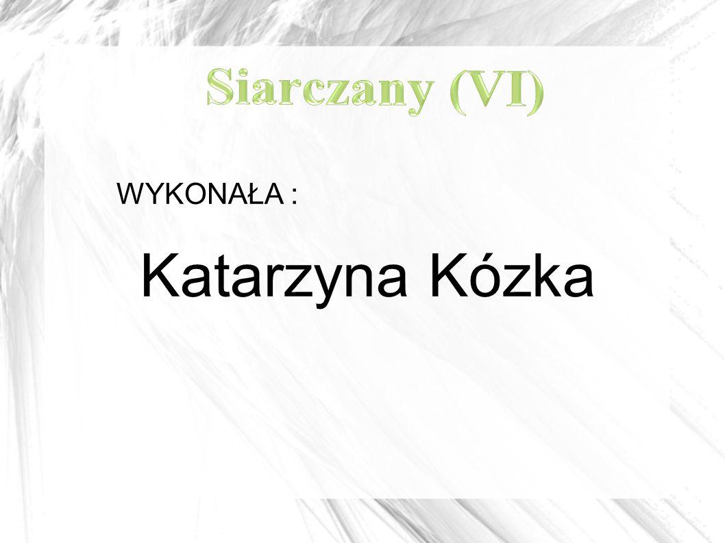 WYKONAŁA : Katarzyna Kózka