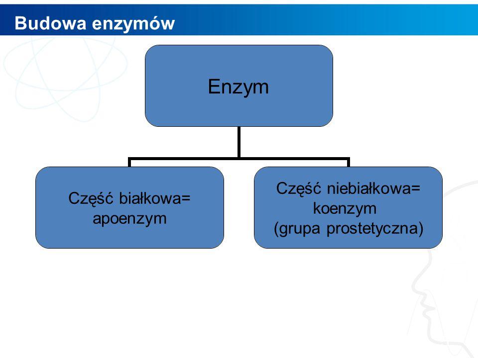 Budowa enzymów 5