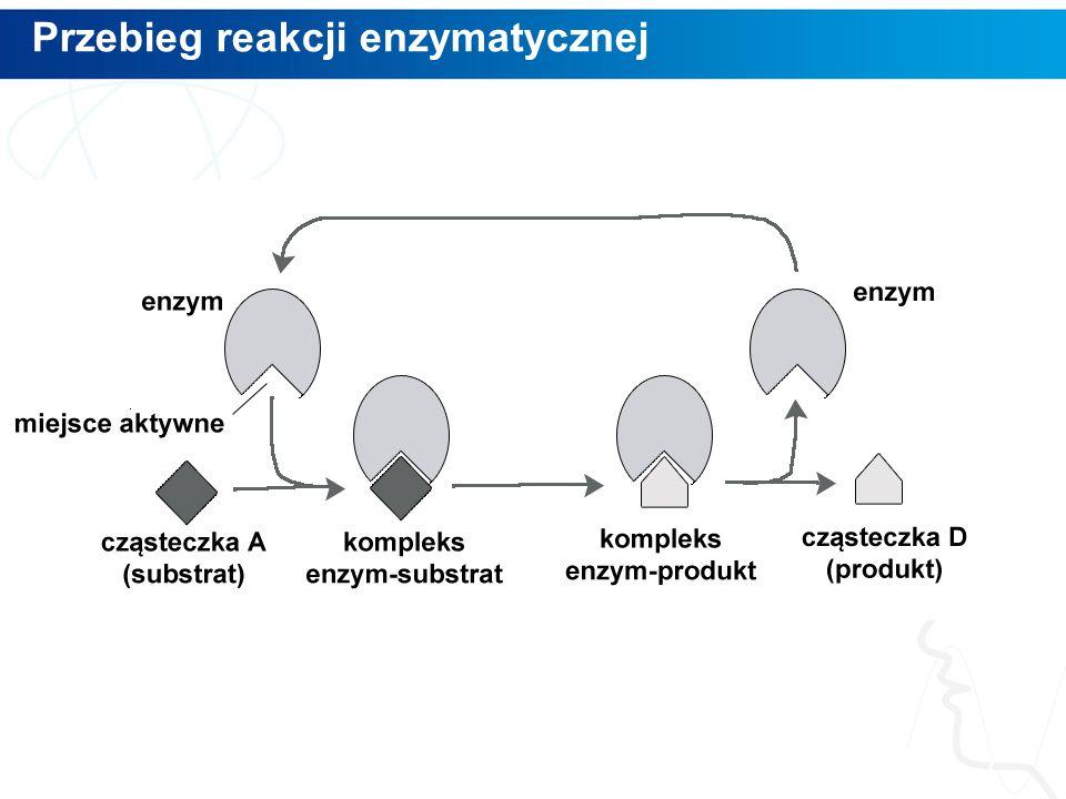 Przebieg reakcji enzymatycznej