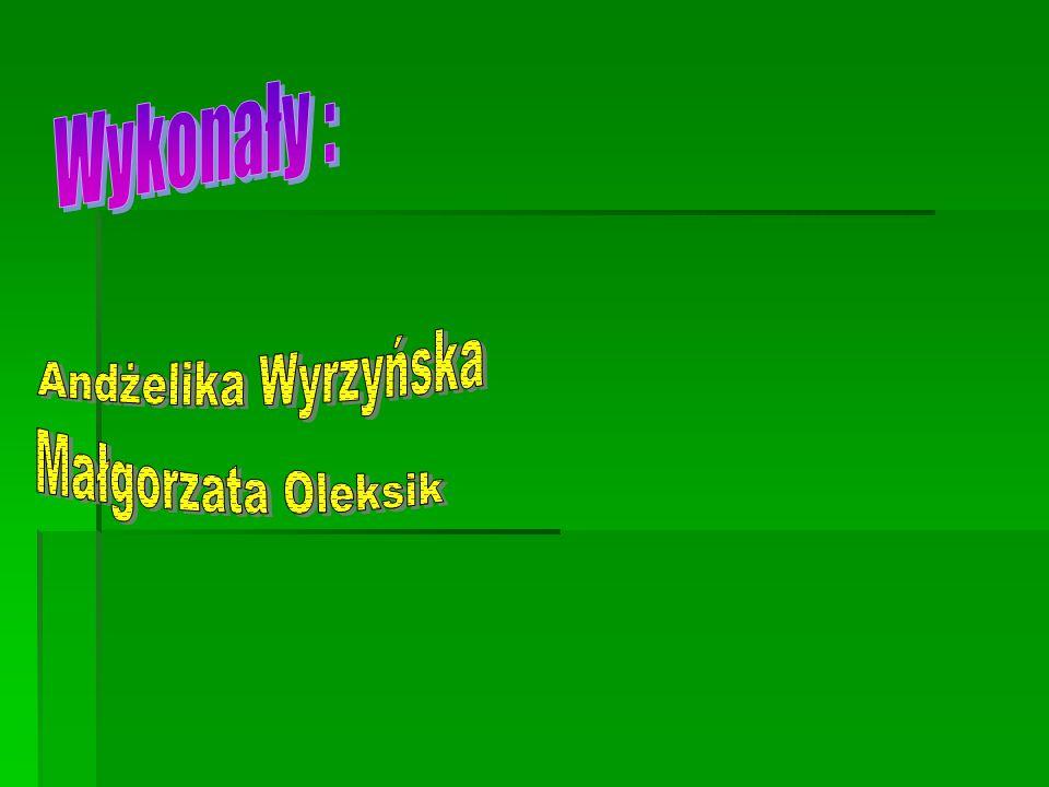 Wykonały : Andżelika Wyrzyńska Małgorzata Oleksik