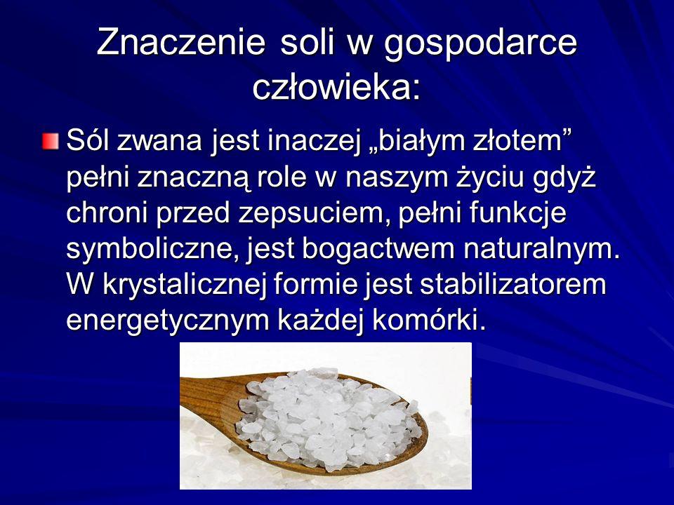 Znaczenie soli w gospodarce człowieka:
