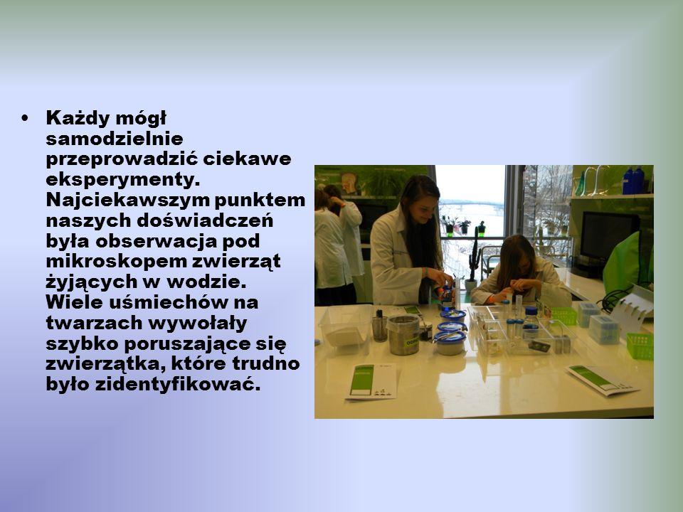 Każdy mógł samodzielnie przeprowadzić ciekawe eksperymenty