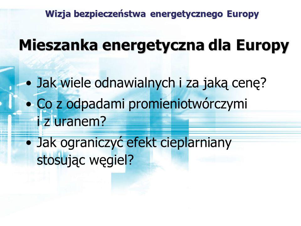 Wizja bezpieczeństwa energetycznego Europy