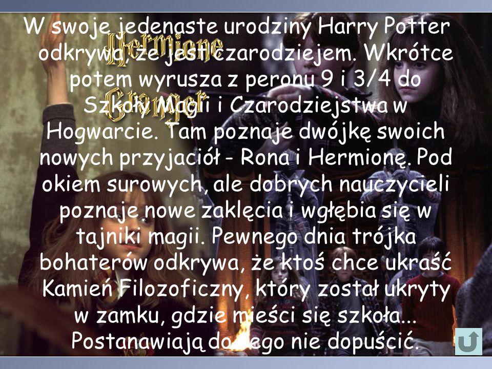 W swoje jedenaste urodziny Harry Potter odkrywa, że jest czarodziejem