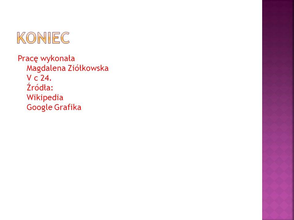 Koniec Pracę wykonała Magdalena Ziółkowska V c 24. Źródła: Wikipedia Google Grafika