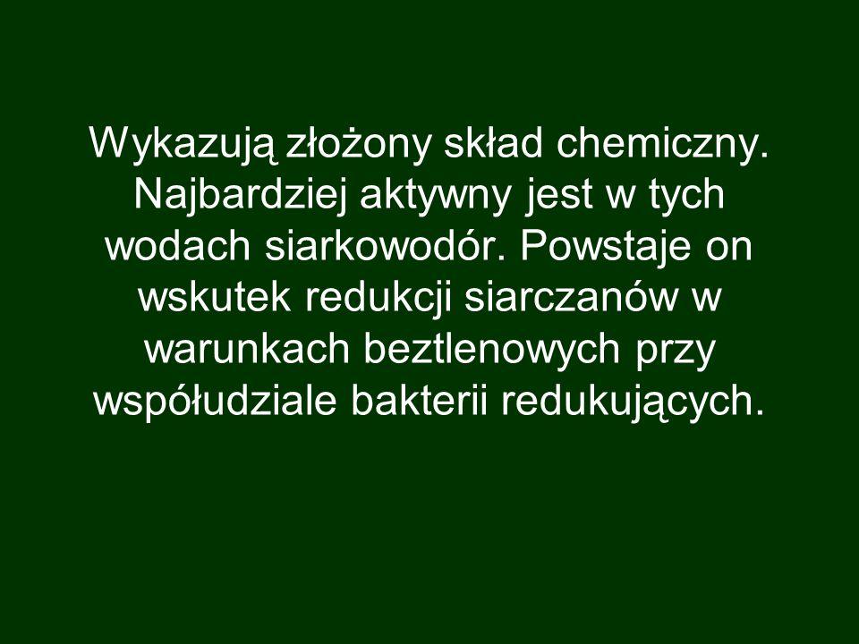 Wykazują złożony skład chemiczny