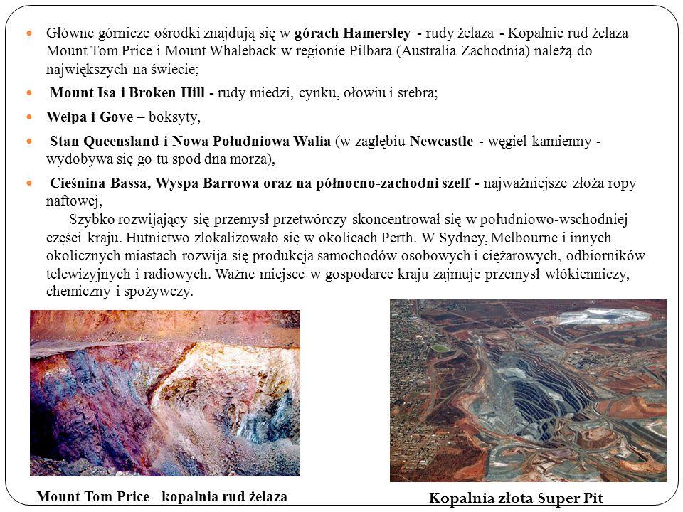 Kopalnia złota Super Pit