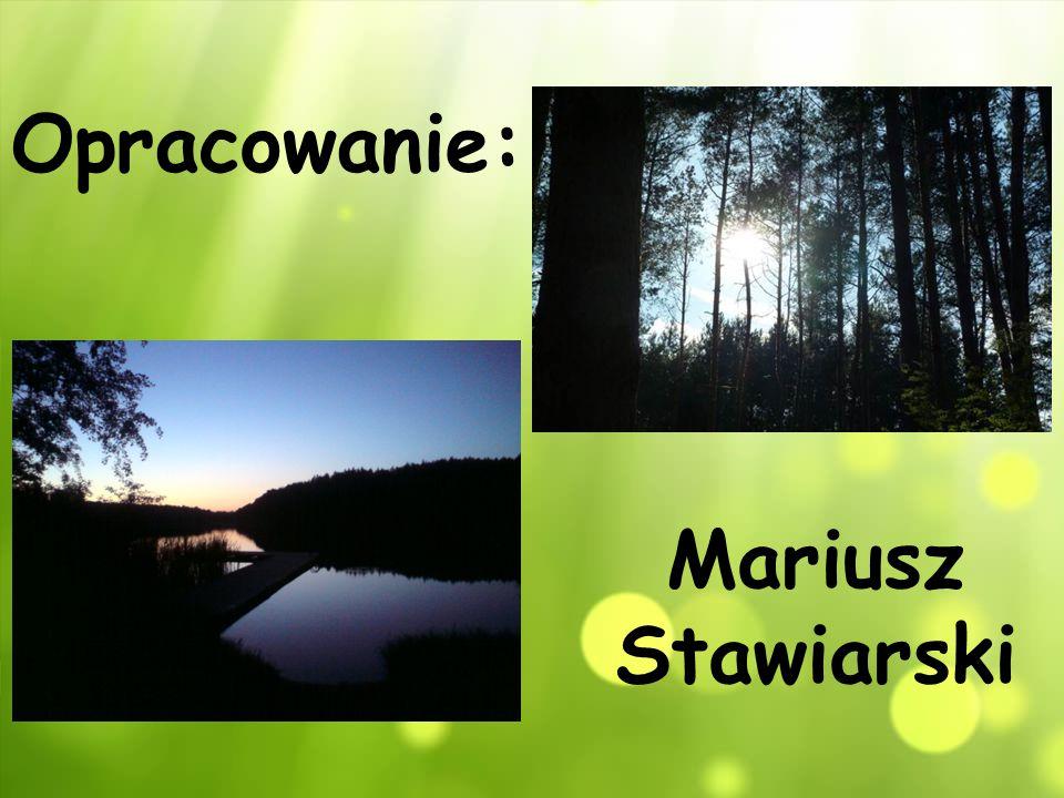 Opracowanie: Mariusz Stawiarski