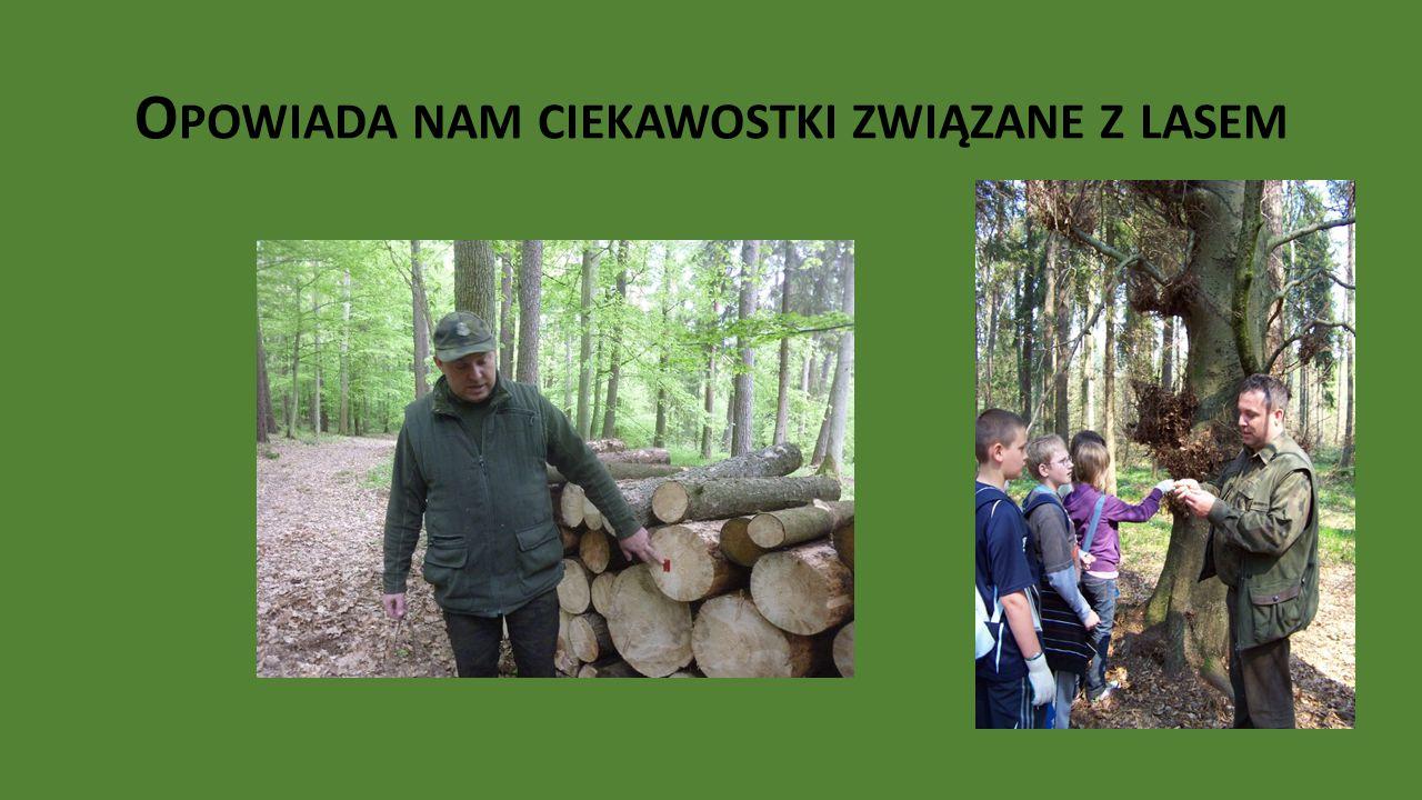 Opowiada nam ciekawostki związane z lasem