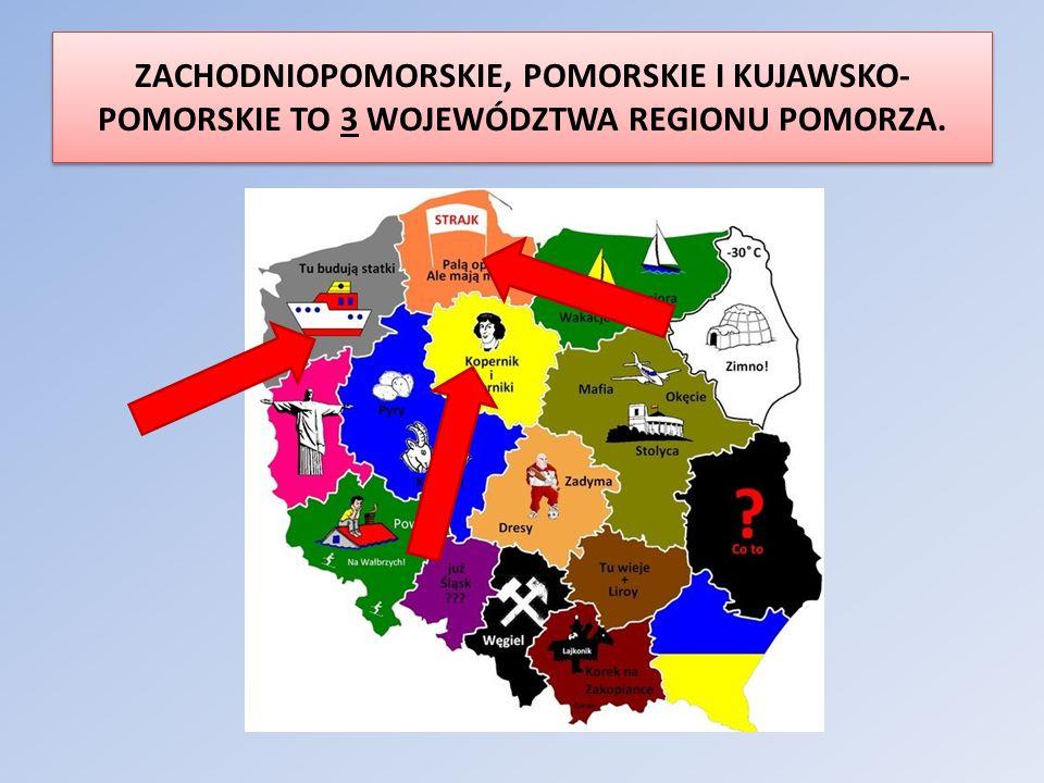 ZACHODNIOPOMORSKIE, POMORSKIE I KUJAWSKO-POMORSKIE TO 3 WOJEWÓDZTWA REGIONU POMORZA.