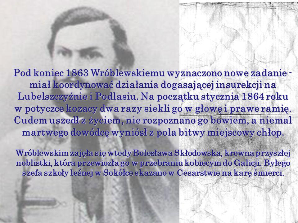 Pod koniec 1863 Wróblewskiemu wyznaczono nowe zadanie - miał koordynować działania dogasającej insurekcji na Lubelszczyźnie i Podlasiu. Na początku stycznia 1864 roku