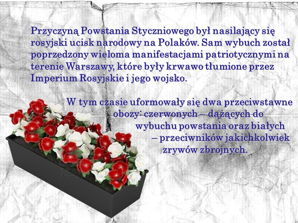 Przyczyną Powstania Styczniowego był nasilający się rosyjski ucisk narodowy na Polaków. Sam wybuch został poprzedzony wieloma manifestacjami patriotycznymi na terenie Warszawy, które były krwawo tłumione przez Imperium Rosyjskie i jego wojsko.