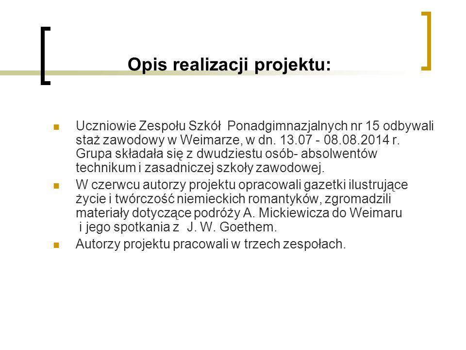 Opis realizacji projektu: