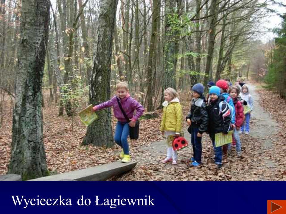 Wycieczka do Łagiewnik