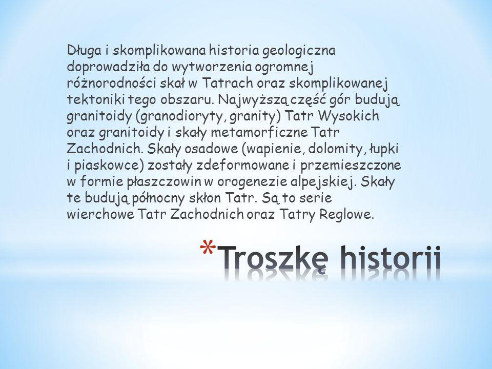 Długa i skomplikowana historia geologiczna doprowadziła do wytworzenia ogromnej różnorodności skał w Tatrach oraz skomplikowanej tektoniki tego obszaru. Najwyższą część gór budują granitoidy (granodioryty, granity) Tatr Wysokich oraz granitoidy i skały metamorficzne Tatr Zachodnich. Skały osadowe (wapienie, dolomity, łupki i piaskowce) zostały zdeformowane i przemieszczone w formie płaszczowin w orogenezie alpejskiej. Skały te budują północny skłon Tatr. Są to serie wierchowe Tatr Zachodnich oraz Tatry Reglowe.
