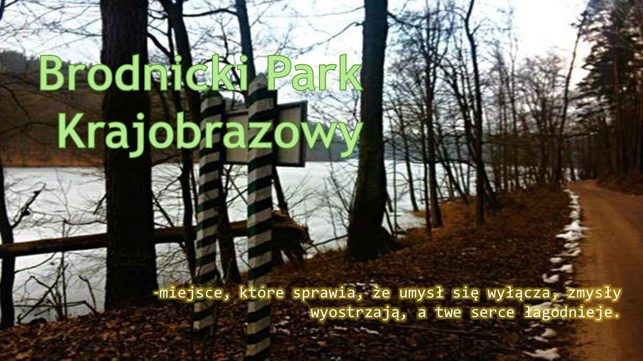 Brodnicki Park Krajobrazowy