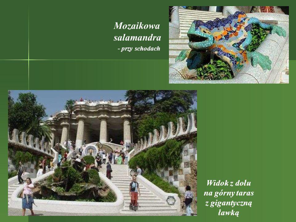 Mozaikowa salamandra Widok z dołu na górny taras z gigantyczną ławką