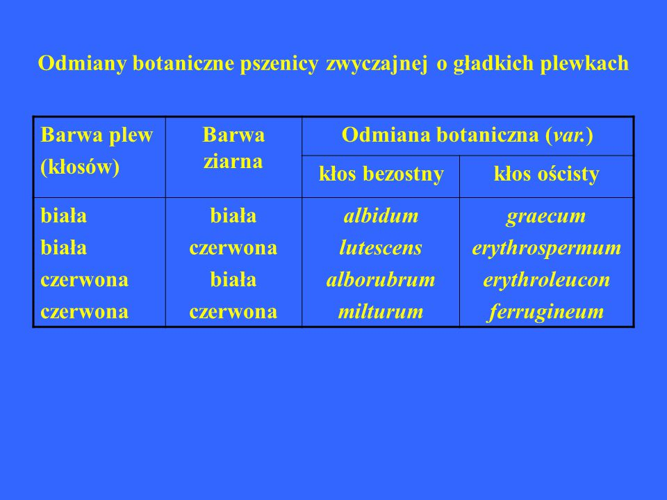 Odmiany botaniczne pszenicy zwyczajnej o gładkich plewkach